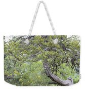 Twisted Cedar Weekender Tote Bag