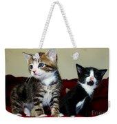 Two Adorable Kittens Weekender Tote Bag