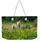 Two Appaloosa Horses  Weekender Tote Bag
