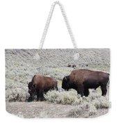 Two Bison Weekender Tote Bag