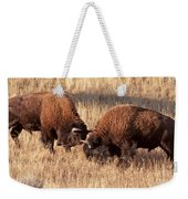 Two Bull Bison Facing Off In Yellowstone National Park Weekender Tote Bag