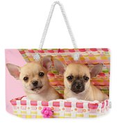 Two Chihuahuas Weekender Tote Bag by Greg Cuddiford