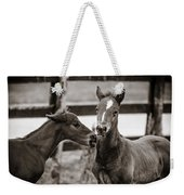 Two Colts Weekender Tote Bag