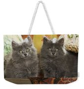 Two Fluffy Kittens Weekender Tote Bag