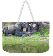 Two Gorillas Relaxing II Weekender Tote Bag