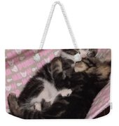 Two Kittens Sleeping Weekender Tote Bag