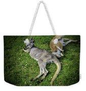 Two Lazy Kangaroos Lying Down Weekender Tote Bag