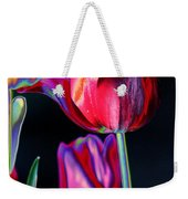 Two Lips 4 You Weekender Tote Bag