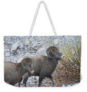 Two Male Rams Weekender Tote Bag
