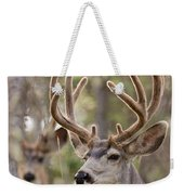 Two Mule Deer Bucks With Velvet Antlers  Weekender Tote Bag
