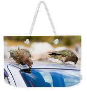 Two Nz Alpine Parrot Kea Trying To Vandalize A Car Weekender Tote Bag