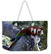 Two On A Branch Weekender Tote Bag