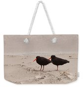 Two Oystercatchers Haematopus Unicolor On Beach Weekender Tote Bag