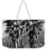 Two Palms Weekender Tote Bag