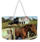 Two Quarter Horses In A Barnyard Weekender Tote Bag