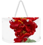 Two Red Parrot Tulips Weekender Tote Bag