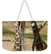 Two Reticulated Giraffes - Giraffa Camelopardalis Weekender Tote Bag