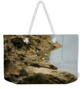 Two Spotted Sandpipers On The Flint Rivers Banks Weekender Tote Bag