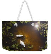 Two Swans With Sun Reflection On Shallow Water Weekender Tote Bag