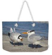 Two Terns Talking Weekender Tote Bag