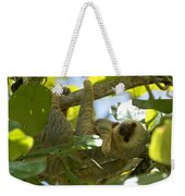 Two-toed Sloth Relaxing With A Grin Weekender Tote Bag