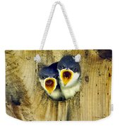 Two Tree Swallow Chicks Weekender Tote Bag