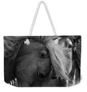Two Wild Stallions Close Weekender Tote Bag