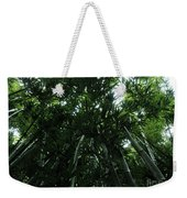 Under The Bamboo Haleakala National Park  Weekender Tote Bag