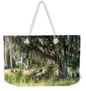 Under The Live Oak Tree Weekender Tote Bag