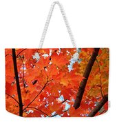 Under The Orange Maple Tree Weekender Tote Bag by Rona Black