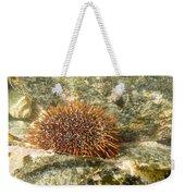 Underwater Shot Of Sea Urchin On Submerged Rocks Weekender Tote Bag