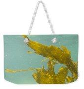 Underwater Shot Of Seaweed Plant Floating Leaves Weekender Tote Bag