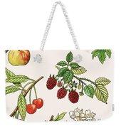 Unidentified Montage Of Fruit Weekender Tote Bag