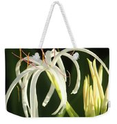 Beauty All Around Us Weekender Tote Bag
