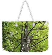 Up The Oak Tree Weekender Tote Bag