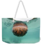 Upside-down Jellyfish Cassiopea Weekender Tote Bag