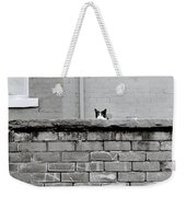 Curiosity Of The Cat Weekender Tote Bag