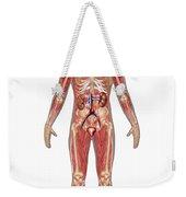Urinary, Skeletal & Muscular Systems Weekender Tote Bag
