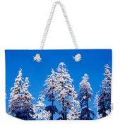 Usa, Oregon, Pine Trees, Winter Weekender Tote Bag