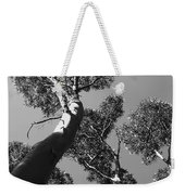 Valley Of The Giant Tingles Bw Weekender Tote Bag