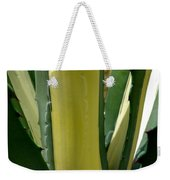 Variegated Agave Weekender Tote Bag