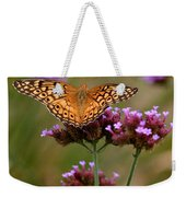 Variegated Fritillary Butterfly Square Weekender Tote Bag