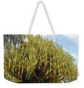 Variegated Screw Pine Weekender Tote Bag