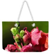 Variegated Snapdragon Weekender Tote Bag