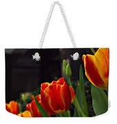 Variegated Tulips Weekender Tote Bag