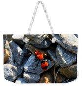 Velvet Ant Weekender Tote Bag