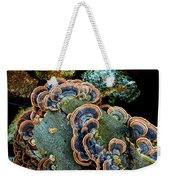 Velvet Wild Mushrooms  Weekender Tote Bag