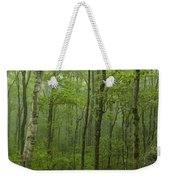 Vermont Mount Mansfield Green Forest Fog Panorama Weekender Tote Bag