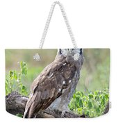 Verreauxs Eagle-owl Bubo Lacteus Weekender Tote Bag