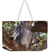 Verreauxs Eagle Owl In Tree Weekender Tote Bag